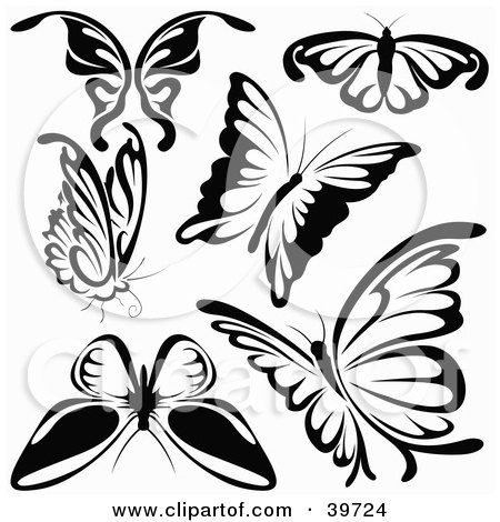 Butterfly Clip Art Black And White Butterfly
