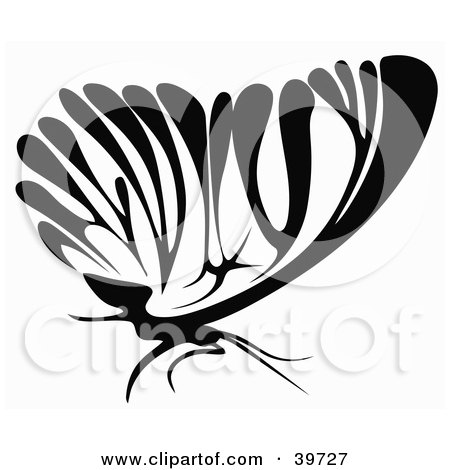 Clipart Illustration of a Black And White Butterfly In Profile by dero