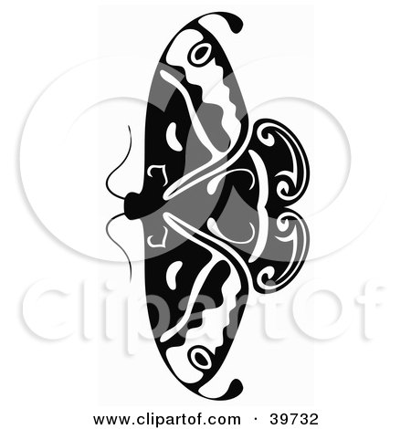 Clipart Illustration of a Small Black And White Butterfly Or Moth With Its Wings Open by dero