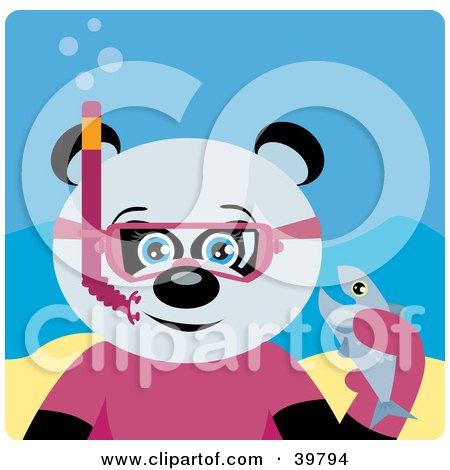Clipart Illustration of a Blue Eyed Female Giant Panda Bear Wearing Pink Snorkel Gear, Holding A Fish Underwater by Dennis Holmes Designs