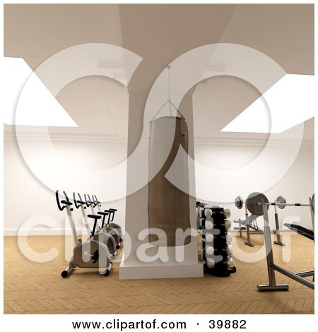 Punching Bag, Weight Bench, Free Weights And Exercise Bikes