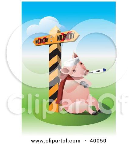 Pig Sick With The Swine Flu, Resting Against A Quarantine Sign Posters, Art Prints
