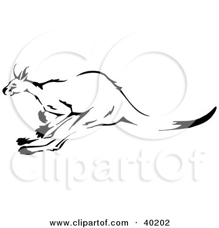 Clipart Illustration of a Black And White Leaping Kangaroo Sketch by Dennis Holmes Designs