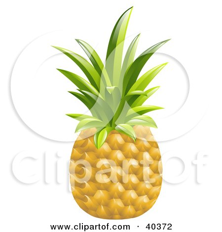 Clipart Illustration of a Whole Organic Pineapple by AtStockIllustration