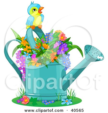 Cute Bird Perched Over Flowers In A Watering Can Posters, Art Prints