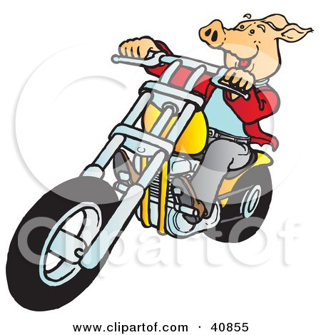 Clipart Illustration of a Happy Hog Riding A Yellow Chopper by Snowy