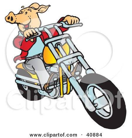 Clipart Illustration of a Carefree Hog Riding A Yellow Chopper by Snowy