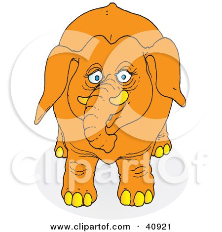 Clipart Illustration of a Curious Orange Elephant Facing Front by Snowy