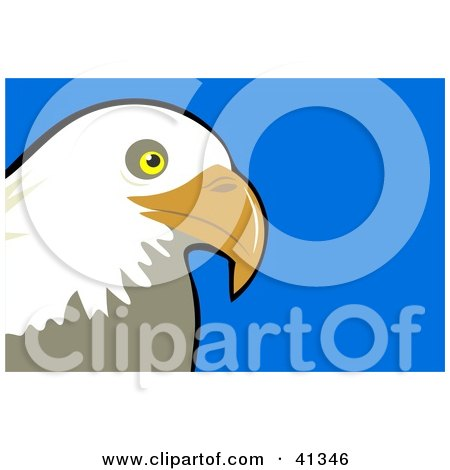 Clipart Illustration of a Majestic Bald Eagle Head Over A Blue Background by Prawny