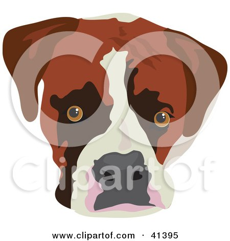 Clipart Illustration of a Boxer Dog Face by Prawny