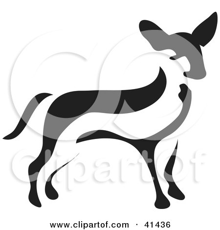 Black And White Paintbrush Styled Image Of A Chihuahua Posters, Art Prints