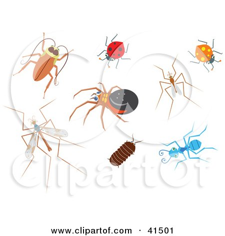 Clipart Illustration of a Cockroach, Ladybug, Spider, Mosquito, Mosquito Hawk, Pillbug And Ant by Prawny