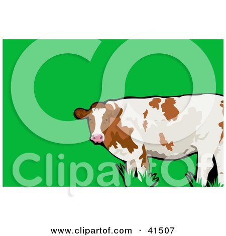 Clipart Illustration of a White And Brown Cow In A Pasture by Prawny