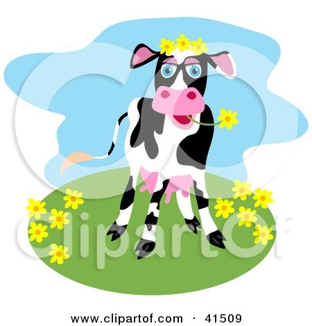 Clipart Illustration of a Happy Black And White Dairy Cow Grazing On Flowers On A Hill by Prawny