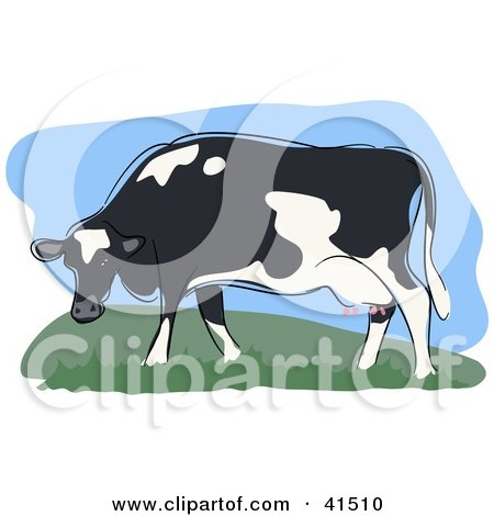 Clipart Illustration of a Grazing Black And White Dairy Cow by Prawny