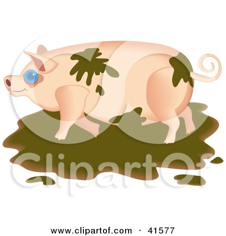 Clipart Illustration of a Messy Pig Playing in the Mud by Prawny