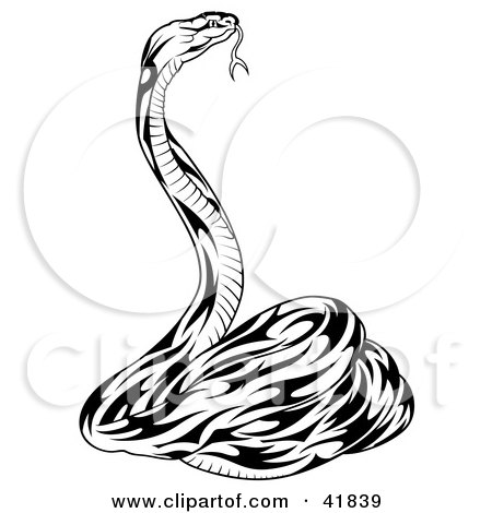 Clipart Illustration of a Black and White Defensive Snake by dero