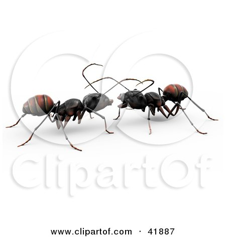 Clipart Illustration of Two 3d Worker Ants Conversating Together by Leo Blanchette