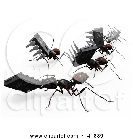 Clipart Illustration of 3d Worker Ants Carrying Micro Chips by Leo Blanchette