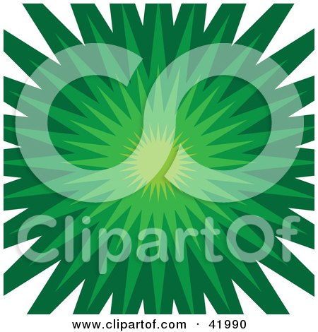 Clipart Illustration of a Green Burst Background On White by Arena Creative