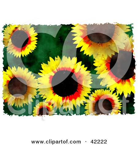 Clipart Illustration of a Background Of Grungy Yellow Sunflowers On Green by Prawny