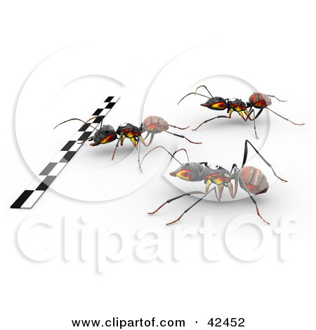 Clipart Illustration of Three Racing Ants Hurrying Towards The Finish Line by Leo Blanchette