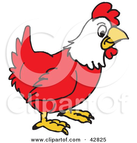 Clipart Illustration of a Red and White Rooster in Profile by Dennis Holmes Designs