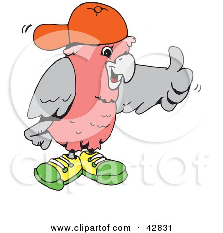 Clipart Illustration of a Galah Cockatoo Wearing Shoes And A Hat And Giving The Thumbs Up by Dennis Holmes Designs
