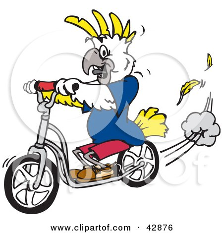 Clipart Illustration of a White And Yellow Cockatoo Bird Riding A Scooter by Dennis Holmes Designs