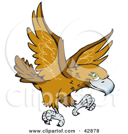 Clipart Illustration of a Flying Wedge Tailed Eagle (Aquila Audax) by Dennis Holmes Designs