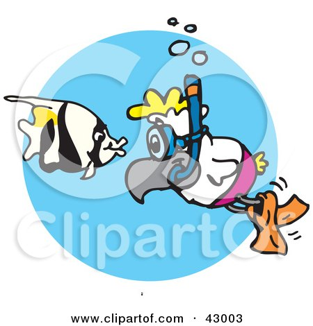 Clipart Illustration of a Snorkeling Cockatoo Watching A Fish by Dennis Holmes Designs