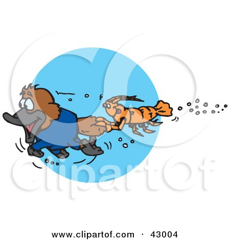 Clipart Illustration of a Crawdad Holding Onto The Tail Of A Swimming Platypus by Dennis Holmes Designs