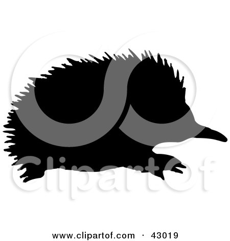 Clipart Illustration of a Black Silhouetted Echidna Spiny Anteater by Dennis Holmes Designs