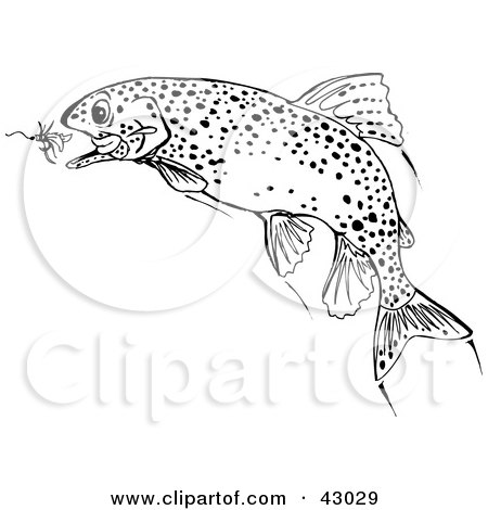 trout coloring page - clipart illustration of a black and white trout fish
