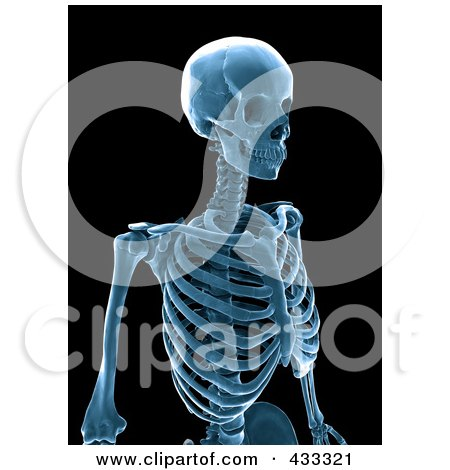 Royalty-Free (RF) Clipart Illustration Of A 3d Blue Human Skeleton Xray by Mopic