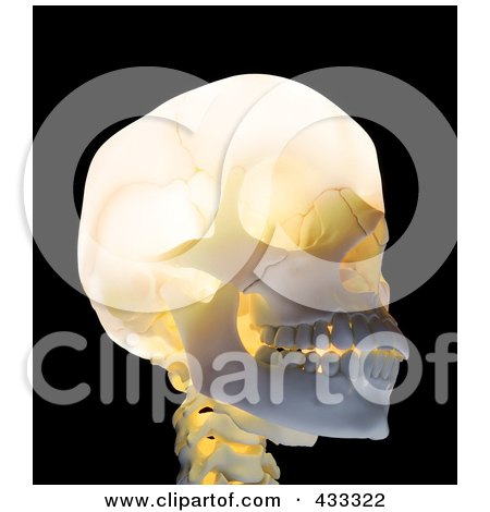 Royalty-Free (RF) Clipart Illustration Of A 3d Glowing Skull by Mopic