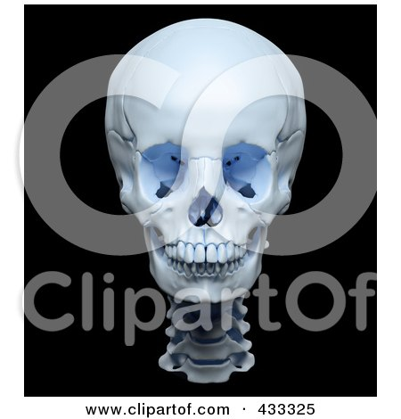 Royalty-Free (RF) Clipart Illustration Of A 3d Highly Accurate Render Of A Human Skull by Mopic