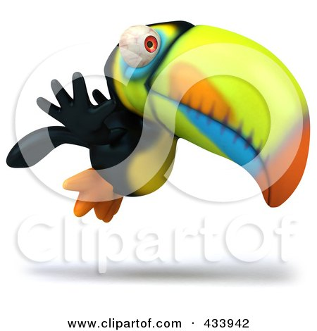 Tropical Birds Flying on Toucan Bird Flying