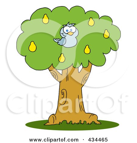 Royalty-Free (RF) Clipart Illustration of a Blue Partridge In A Pear Tree by Hit Toon
