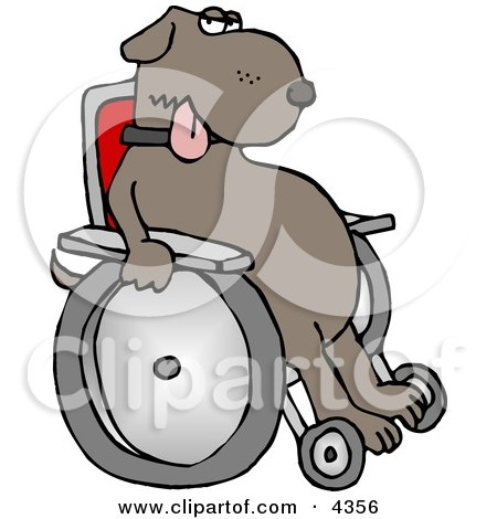 Injured Dog Sitting In A Wheelchair Clipart