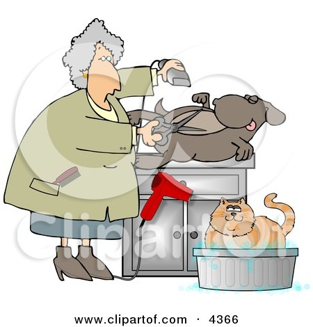Female Pet Groomer Cutting and Trimming Dog Hair Clipart by djart