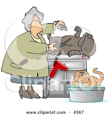 Happy Dog Being Groomed Clipart by djart