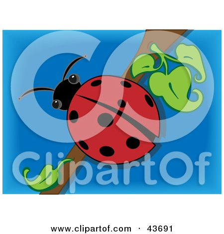 Clipart Illustration of a Pretty Red Ladybug On A Branch With Green Leaves by mheld