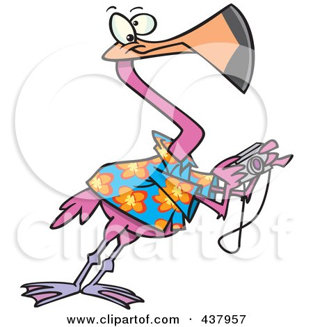 Royalty-Free (RF) Clip Art Illustration of a Cartoon Tourist Flamingo Taking Pictures by toonaday