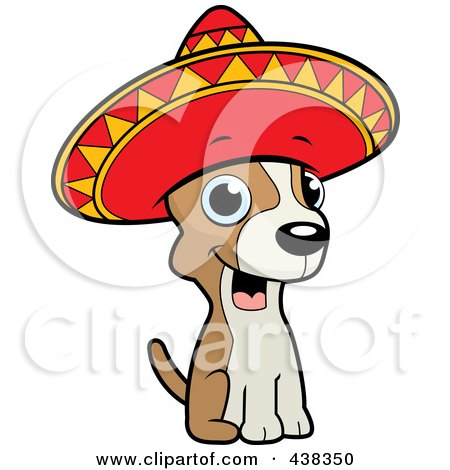 Chihuahua Sitting And Wearing A Sombrero Posters, Art Prints