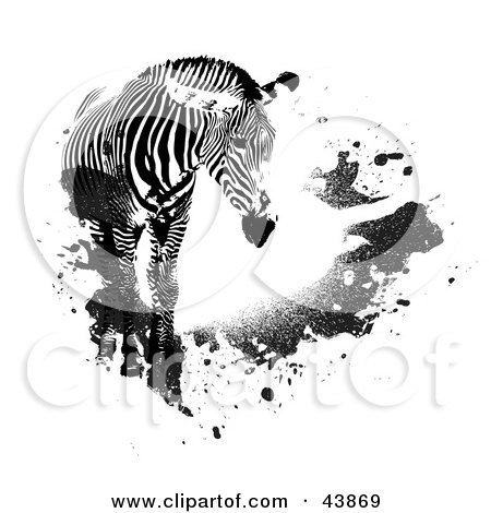 Clipart Illustration of a Lone Zebra With Black Grunge Splatters by Arena Creative