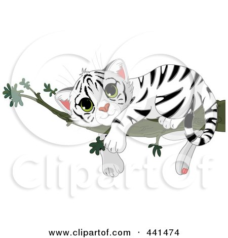 Royalty-Free (RF) Clip Art Illustration of a Baby White Tiger Resting On A Branch by Pushkin