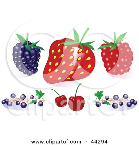 Clipart Illustration of a Blackberry, Strawberry, Raspberry, Blueberries And Cherries by toonster