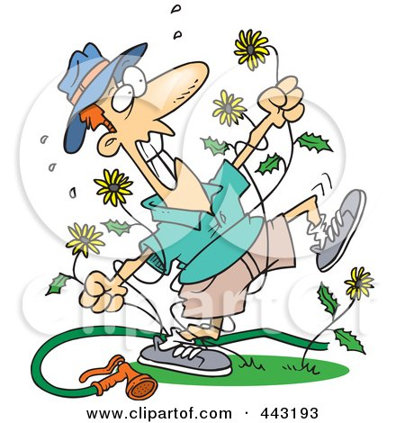 Royalty-Free (RF) Clip Art Illustration of a Cartoon Mad Man Pulling Dandelions by toonaday