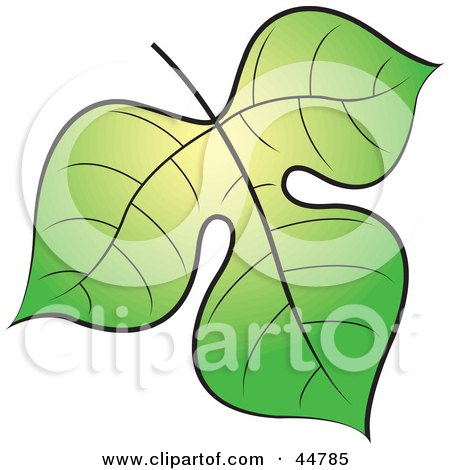 Royalty-free (RF) Clipart Illustration of a Green And Yellow Tree Leaf by Lal Perera